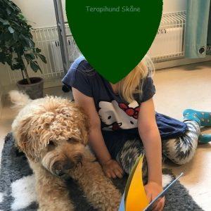Terapihund i Skåne